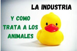 un pato de baño y la industria