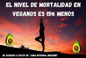 yoga en atardecer vegan