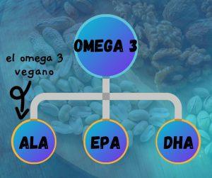 omega 3 vegano y sus tipos