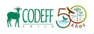codeff logo. vegetarianos en chile