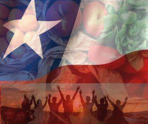 bandera de vegetarianos y veganos en Chile