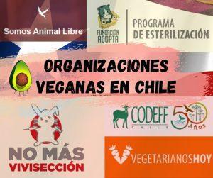 organizaciones de veganos en chile (y de vegetarianos en chile)
