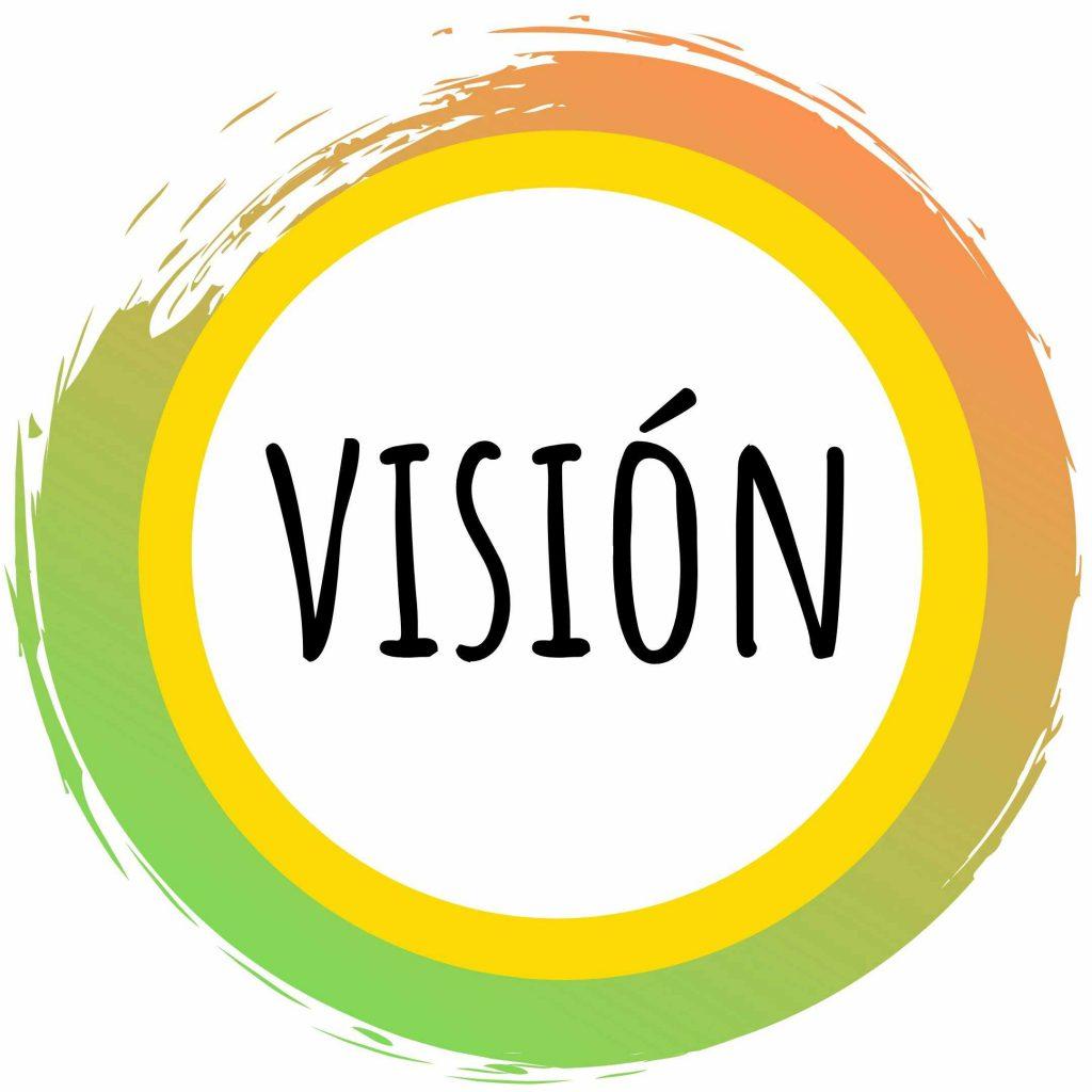 vision logo1