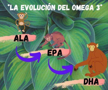 el desarollo del omega 3 vegano en dibujo de monos