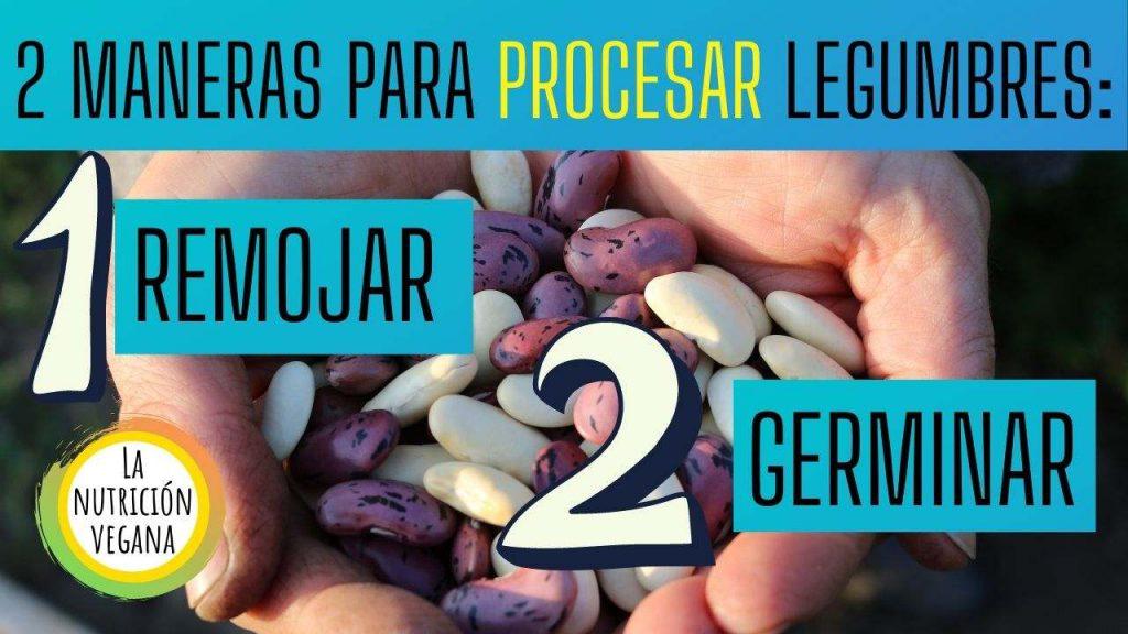 2 maneras para procesar legumbres. germinar y remojar