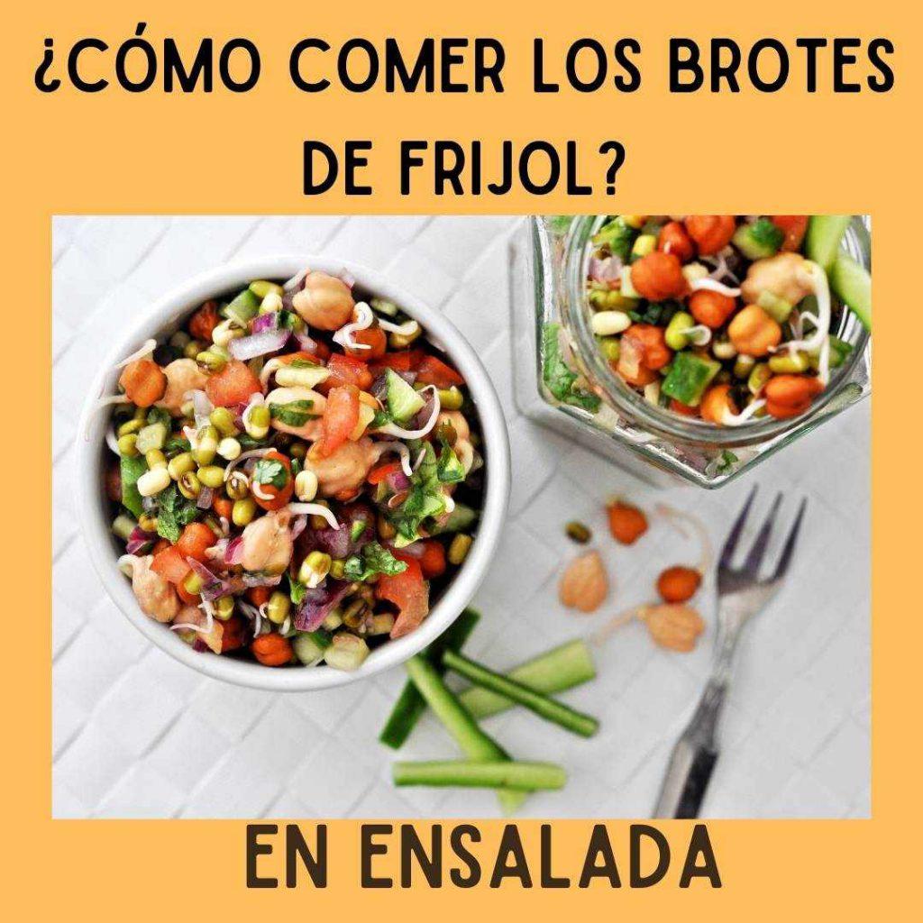 comer los frijoles germinados crudas en ensaladas